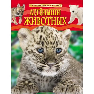 Детеныши животных. Детская энциклопедия.