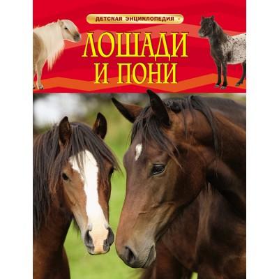 Лошади и пони. Детская энциклопедия.